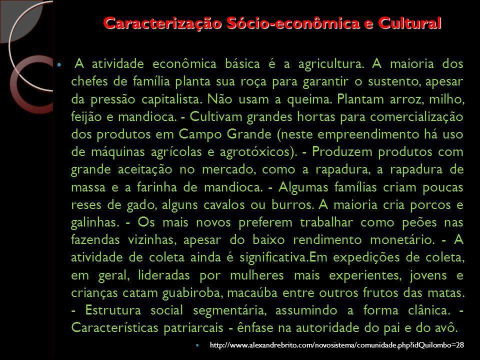 Caracterização Sócio-econômica e Cultural A atividade econômica básica é a agricultura. A maioria dos chefes de família planta sua roça para garantir