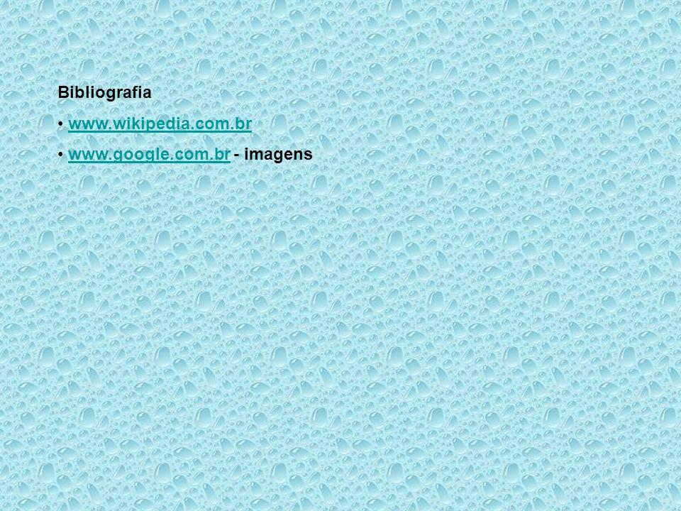 Bibliografia www.wikipedia.com.br www.google.com.br - imagenswww.google.com.br