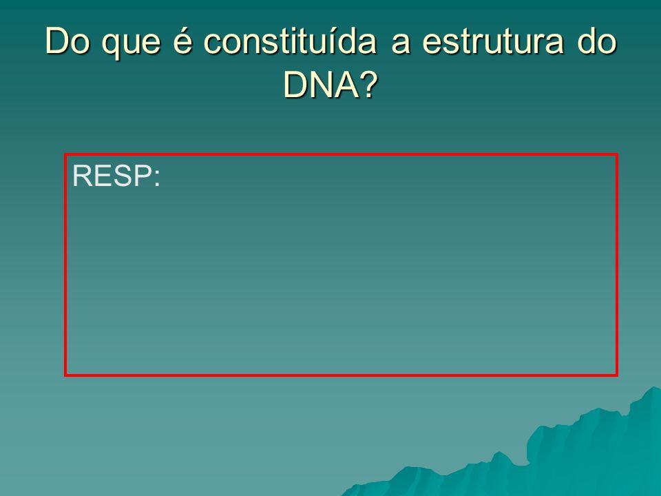 Do que é constituída a estrutura do DNA? RESP:
