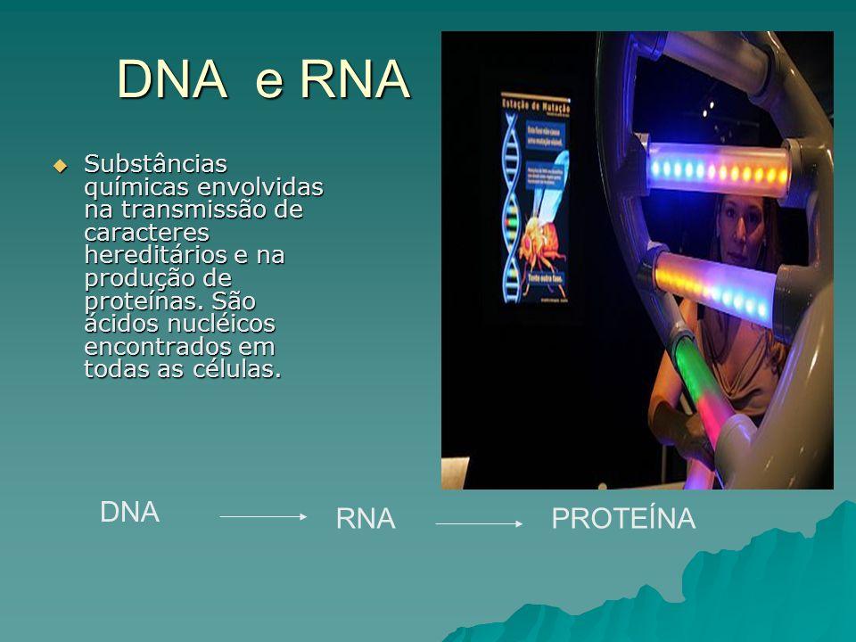 Substâncias químicas envolvidas na transmissão de caracteres hereditários e na produção de proteínas.