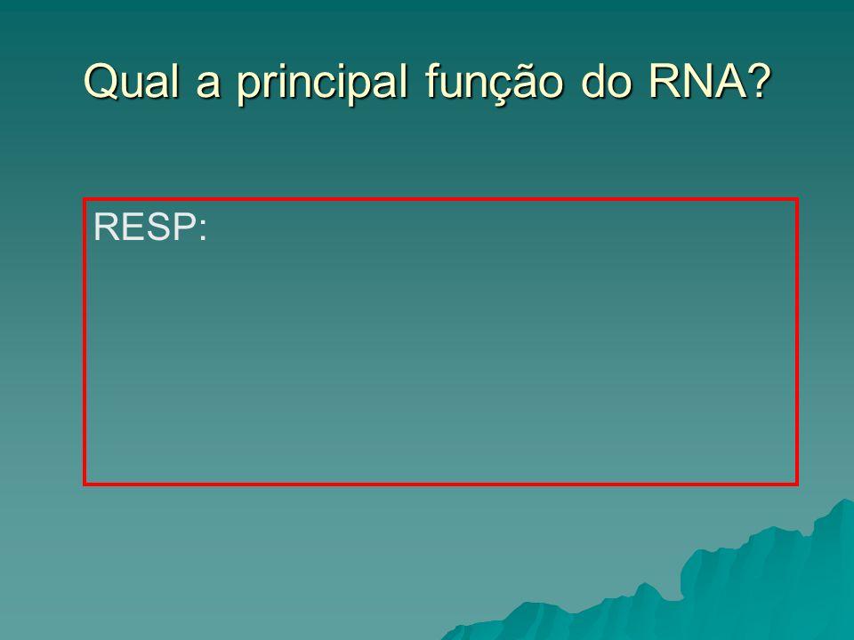 Qual a principal função do RNA? RESP: