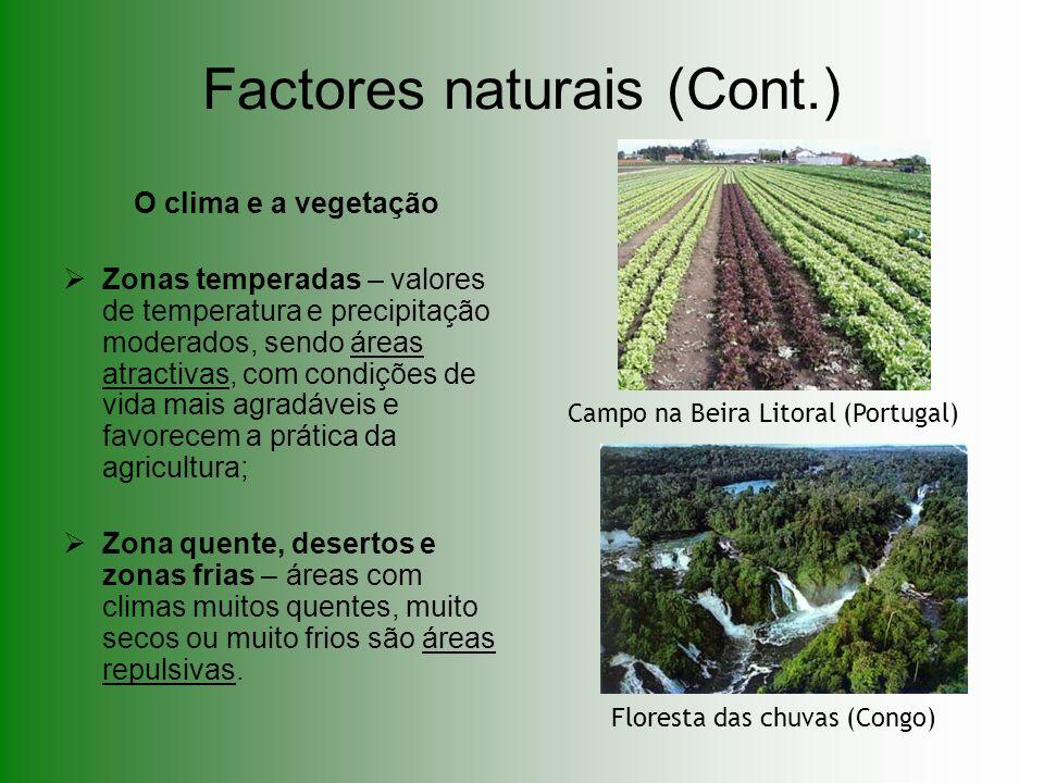Factores naturais (Cont.) O clima e a vegetação Zonas temperadas – valores de temperatura e precipitação moderados, sendo áreas atractivas, com condiç