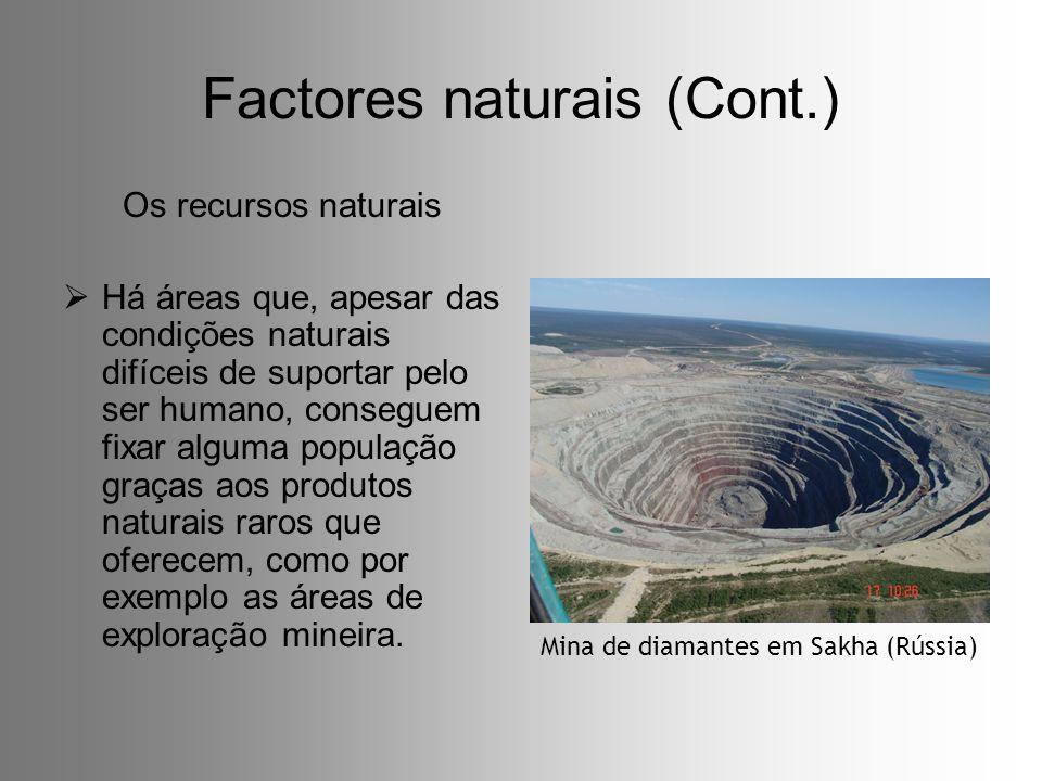 Factores naturais (Cont.) Os recursos naturais Há áreas que, apesar das condições naturais difíceis de suportar pelo ser humano, conseguem fixar algum