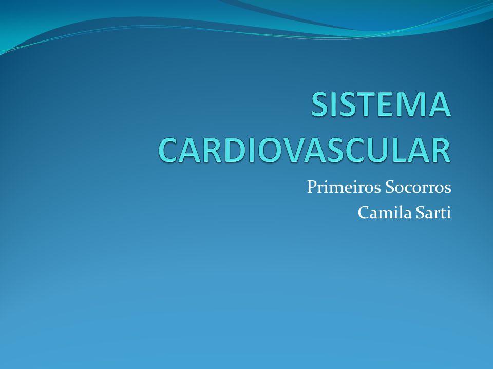 Primeiros Socorros Camila Sarti
