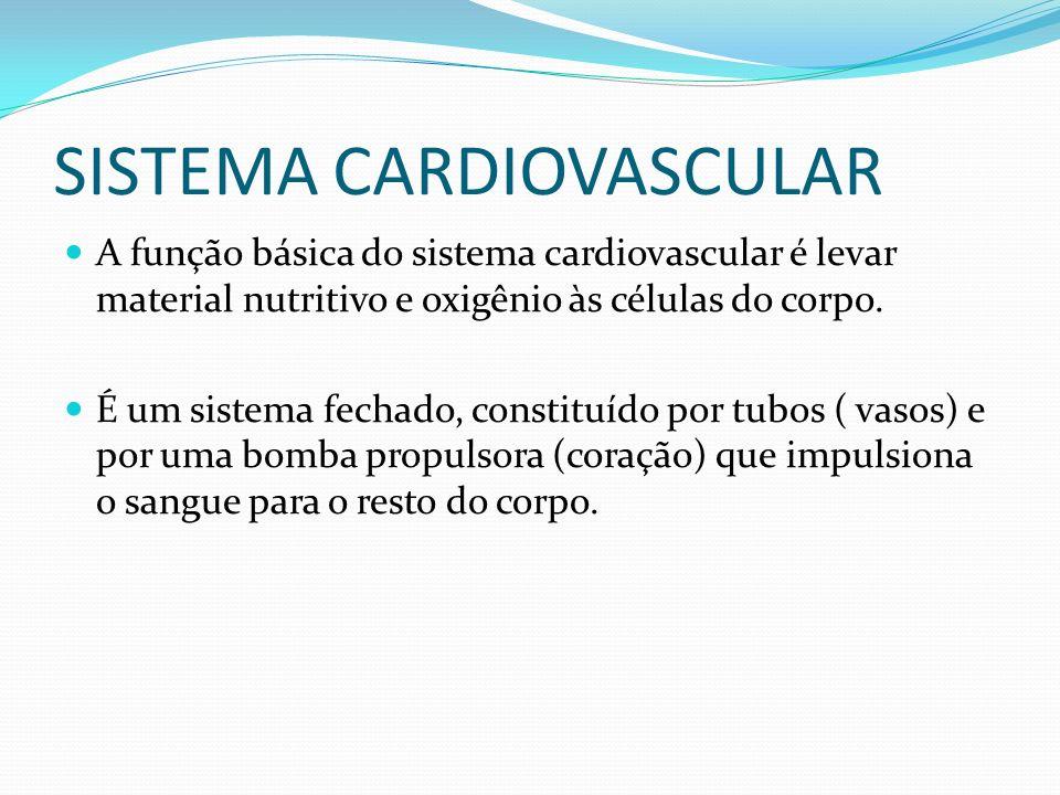 SISTEMA CARDIOVASCULAR A função básica do sistema cardiovascular é levar material nutritivo e oxigênio às células do corpo. É um sistema fechado, cons