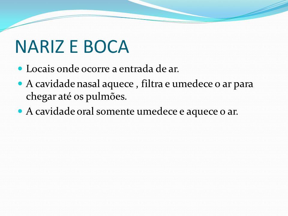 NARIZ E BOCA Locais onde ocorre a entrada de ar. A cavidade nasal aquece, filtra e umedece o ar para chegar até os pulmões. A cavidade oral somente um