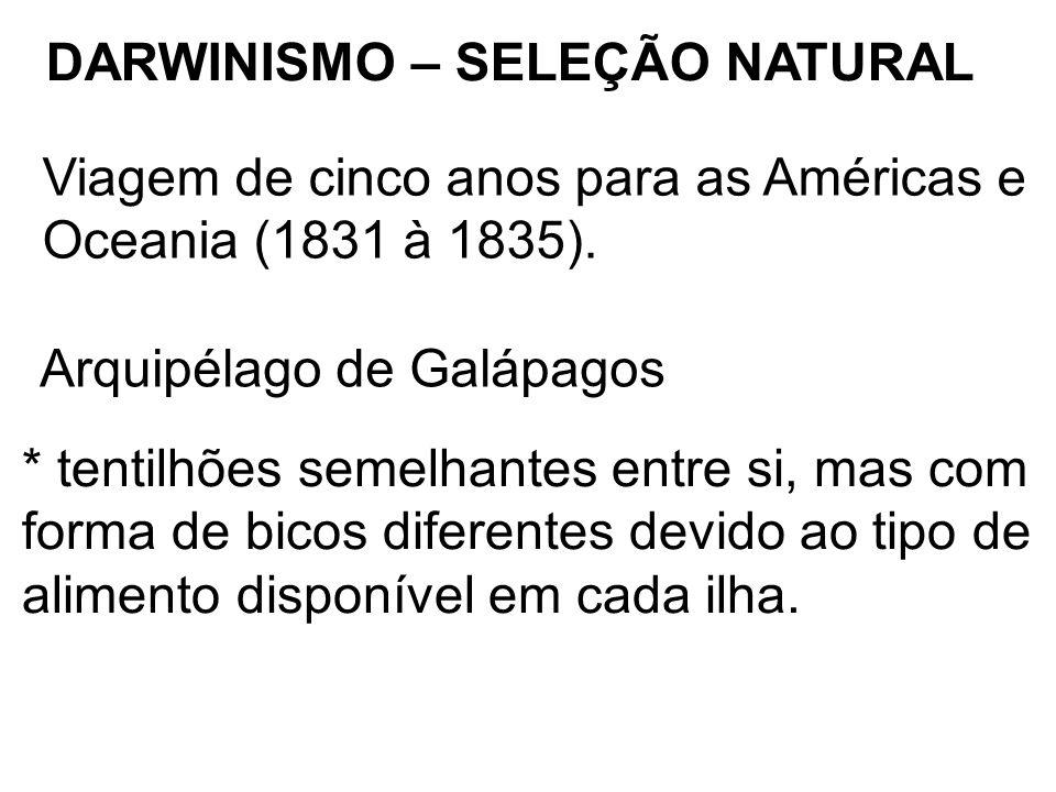 DARWINISMO – SELEÇÃO NATURAL Viagem de cinco anos para as Américas e Oceania (1831 à 1835). Arquipélago de Galápagos * tentilhões semelhantes entre si