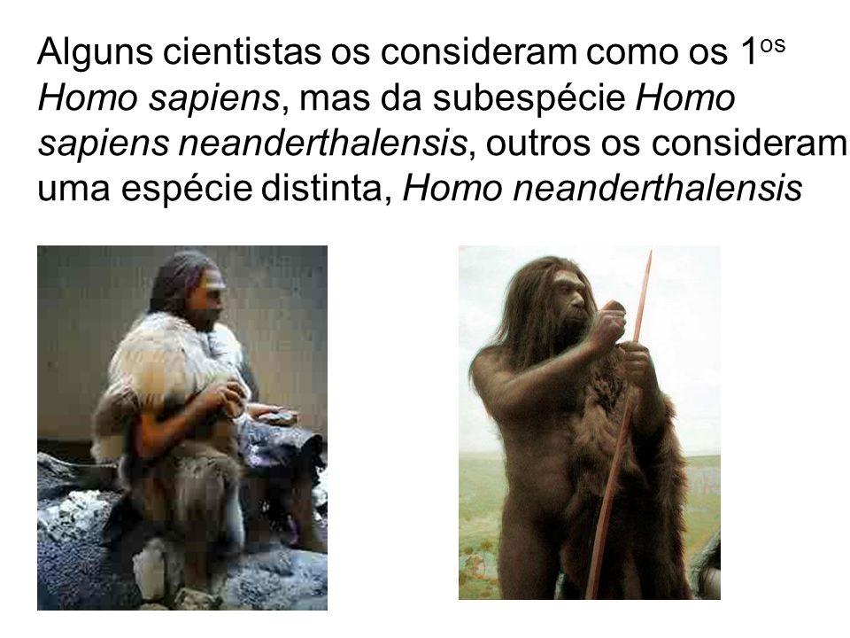 Homem moderno (Homens de Cro-Magnon) Os primeiros hominídeos Homo sapiens sapiens, surgiram na África entre 90 e 80 mil anos atrás, a partir do Homo ergaster ou Homo erectus ou, ainda, do Homo heidelbergensis Da África dispersaram para as demais regiões, talvez devido ao aumento das populações, em busca de novos territórios para caça.