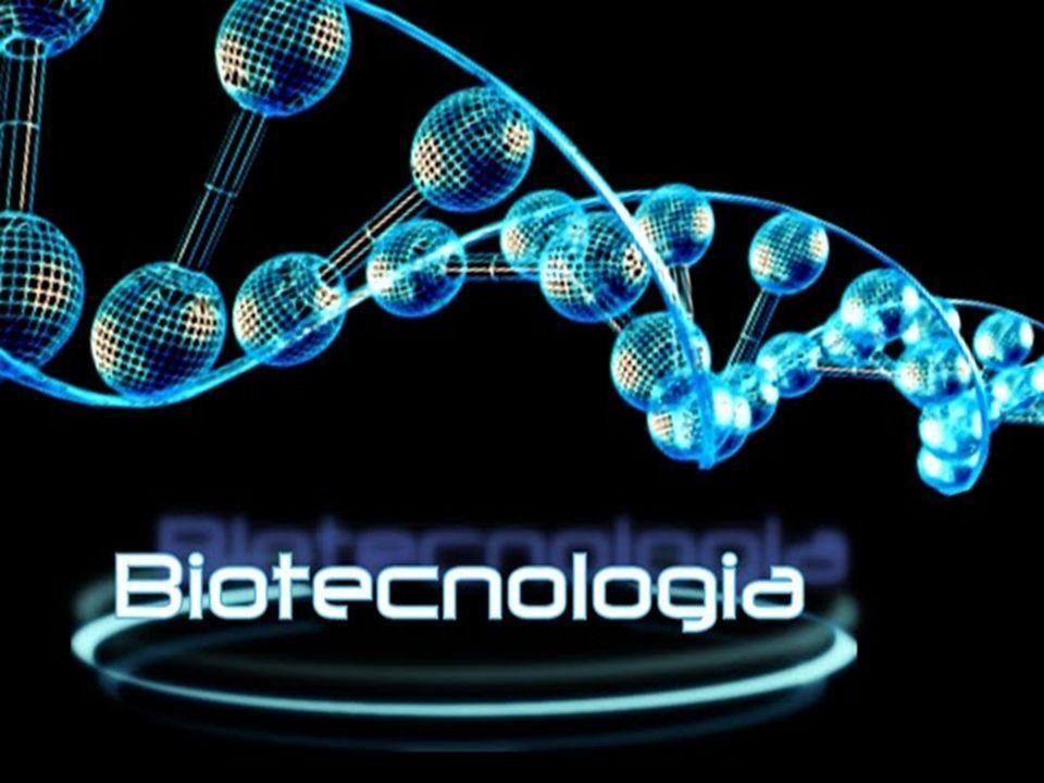 INTRODUÇÃO Conjunto de técnicas que utiliza seres vivos e conhecimentos biológicos para obtenção de produtos que beneficiam o ser humano