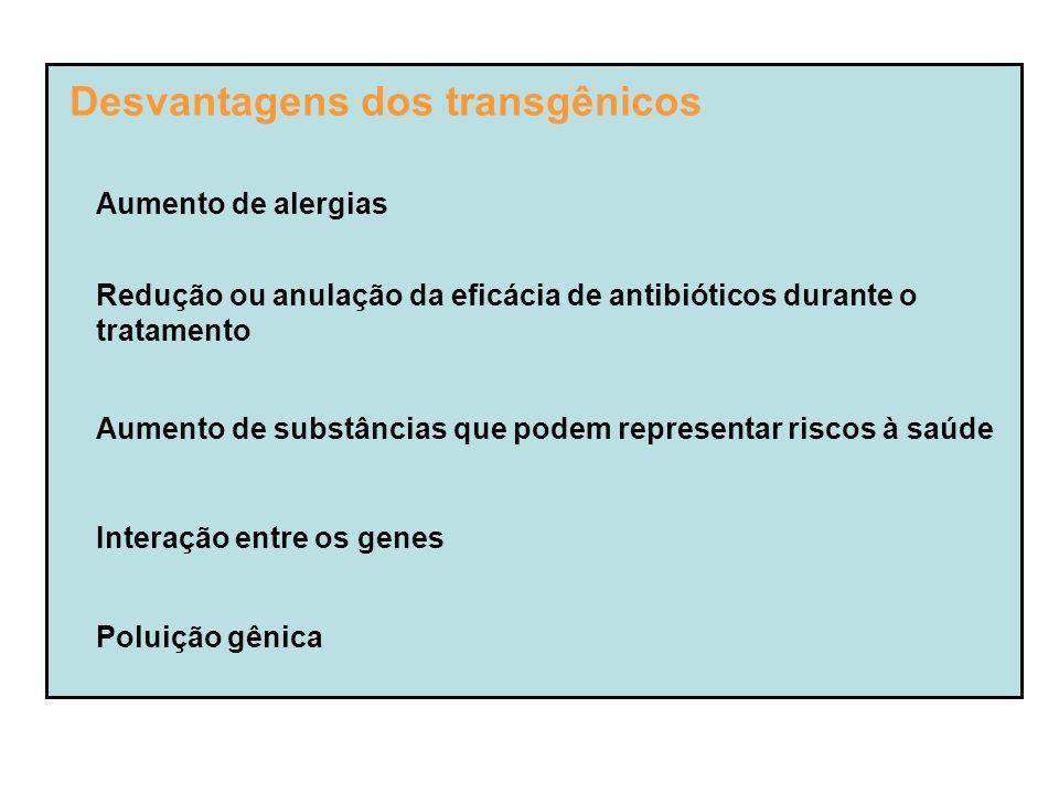 Desvantagens dos transgênicos Aumento de alergias Redução ou anulação da eficácia de antibióticos durante o tratamento Aumento de substâncias que podem representar riscos à saúde Interação entre os genes Poluição gênica