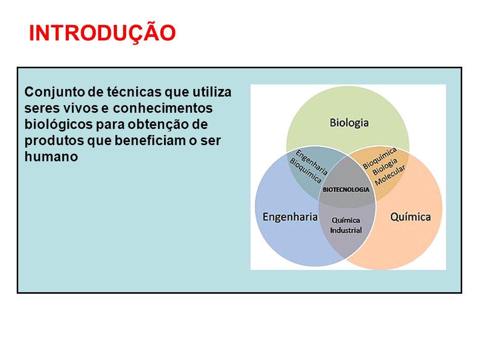 Biotecnologia clássica Biotecnologia moderna Fermentação Propagação vegetativa Hibridação Clonagem molecular Clonagem de vertebrados Transgenia Terapia gênica Células- tronco Marcadores genéticos