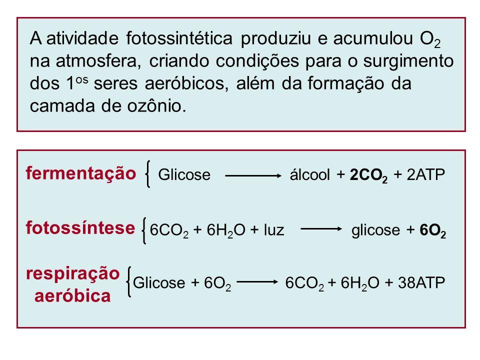 Hipótese autotrófica Os 1 os seres vivos surgiram em ambientes extremos (mais protegidos), nutrindo-se a partir de reações entre substâncias inorgânicas, assim como bactérias (archaeas) atuais (quimiolitoautotróficas).