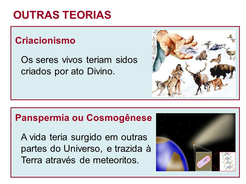 OUTRAS TEORIAS Criacionismo Os seres vivos teriam sidos criados por ato Divino.