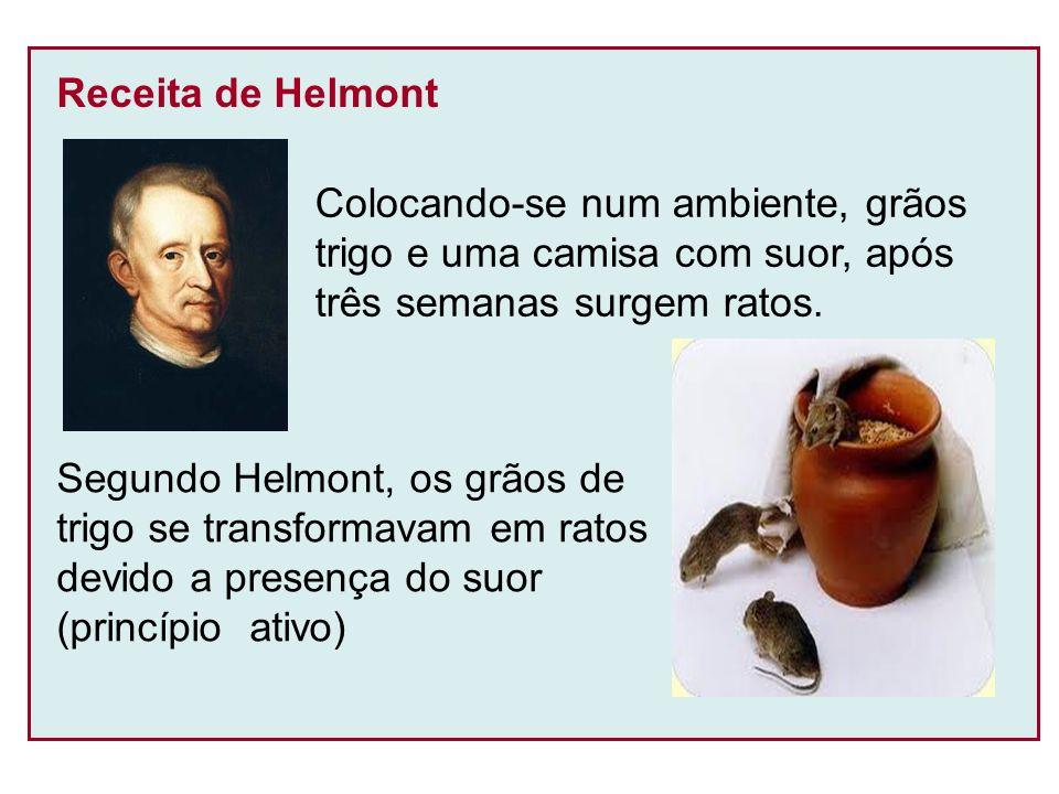 BIOGÊNESE Os seres vivos se originam a partir de outros seres vivos (reprodução) Francesco Redi (século XVII) Aparecimento da larvas de moscas na carne em decomposição
