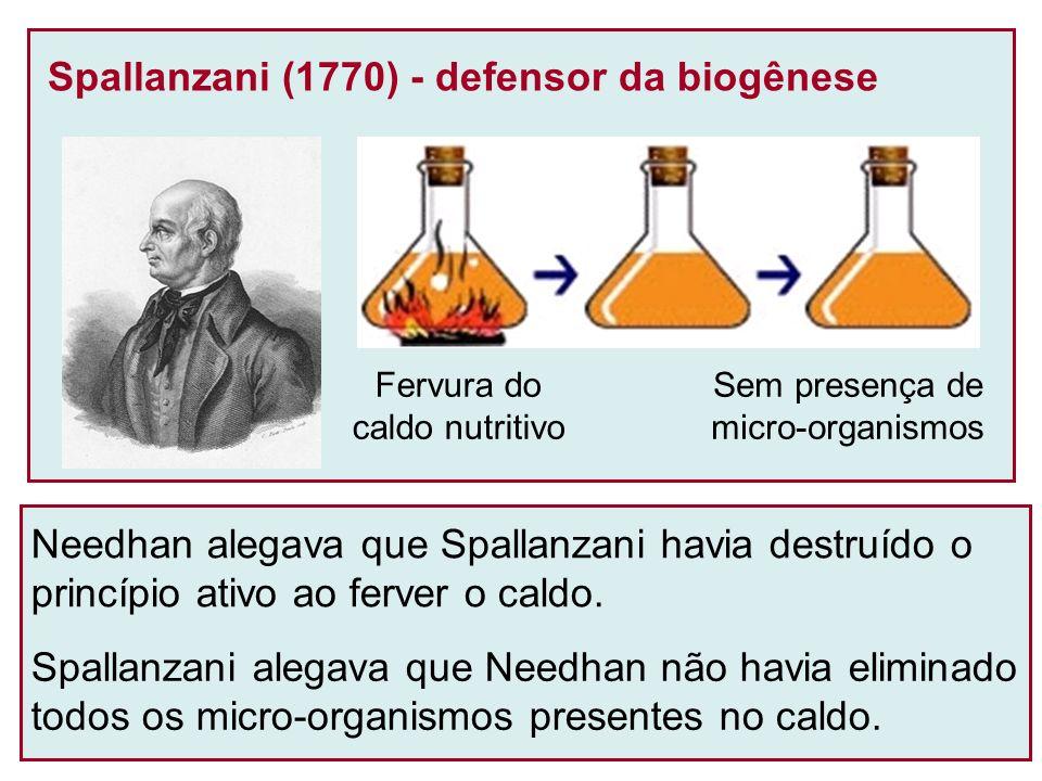 Confirmação da Biogênese (Pasteur, 1860) * O formato do tubo torcido (pescoço de cisne) e as gotículas de água nas dobras (filtro) dificultam o contato de micro-organismos com o caldo nutritivo.