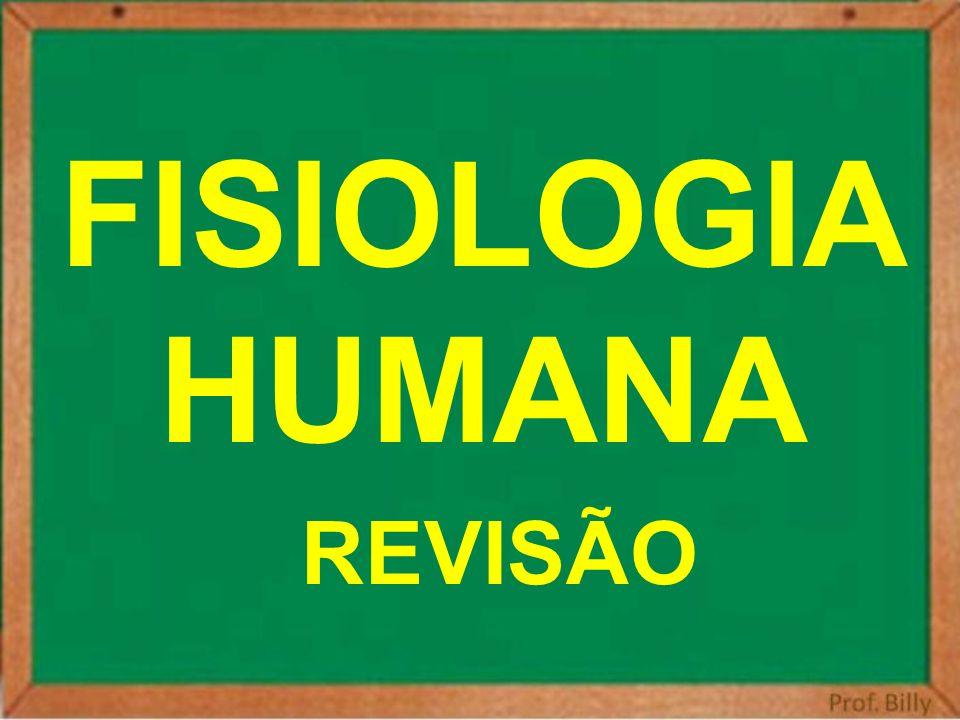 FISIOLOGIA HUMANA REVISÃO