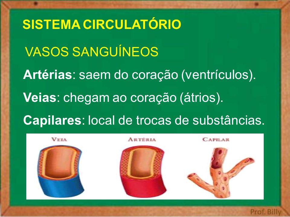 SISTEMA CIRCULATÓRIO VASOS SANGUÍNEOS Artérias: saem do coração (ventrículos). Veias: chegam ao coração (átrios). Capilares: local de trocas de substâ