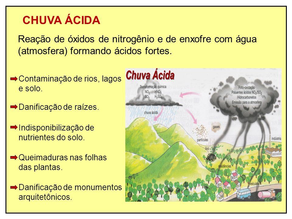 CHUVA ÁCIDA Reação de óxidos de nitrogênio e de enxofre com água (atmosfera) formando ácidos fortes. Danificação de raízes. Contaminação de rios, lago