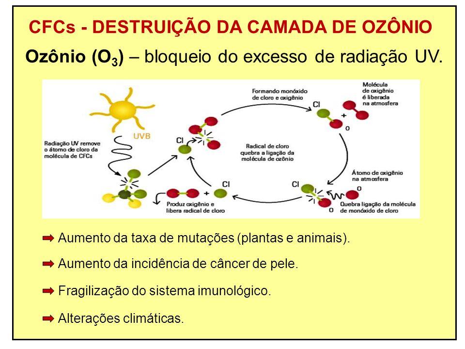 CFCs - DESTRUIÇÃO DA CAMADA DE OZÔNIO Ozônio (O 3 ) – bloqueio do excesso de radiação UV. Alterações climáticas. Fragilização do sistema imunológico.