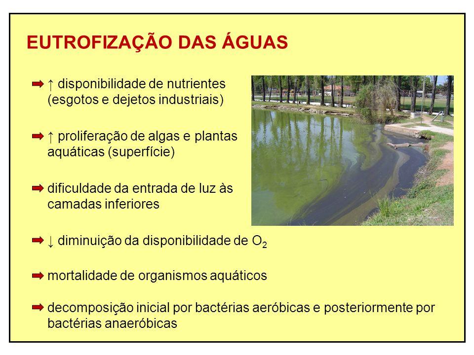 EUTROFIZAÇÃO DAS ÁGUAS disponibilidade de nutrientes (esgotos e dejetos industriais) proliferação de algas e plantas aquáticas (superfície) dificuldad