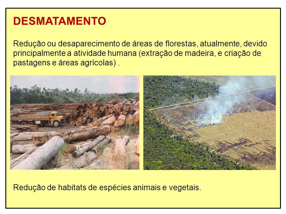 DESMATAMENTO Redução ou desaparecimento de áreas de florestas, atualmente, devido principalmente a atividade humana (extração de madeira, e criação de
