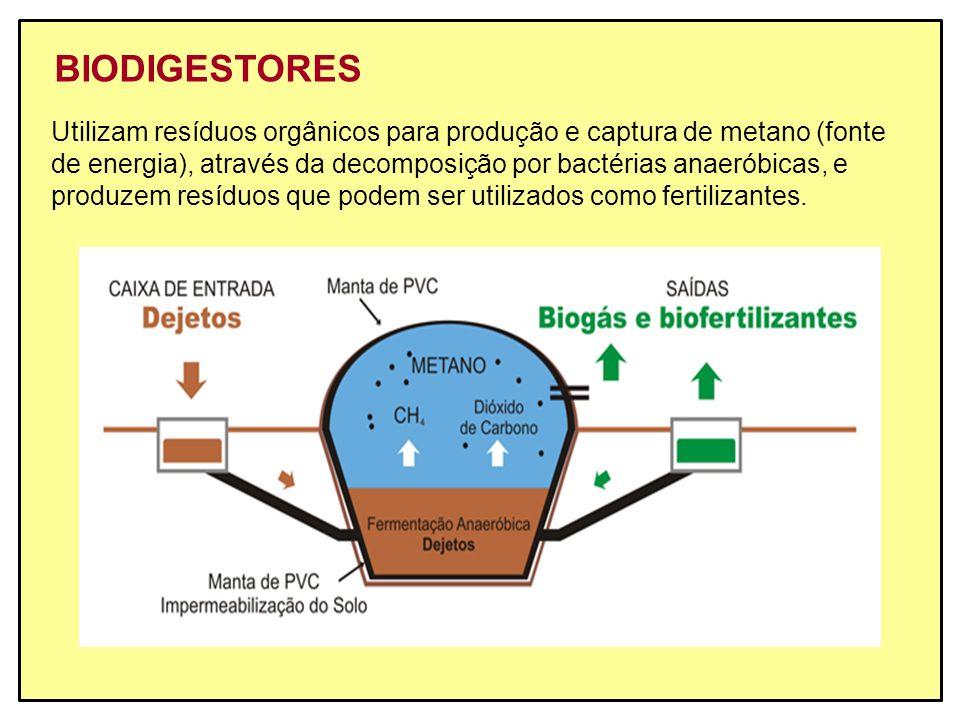BIODIGESTORES Utilizam resíduos orgânicos para produção e captura de metano (fonte de energia), através da decomposição por bactérias anaeróbicas, e p
