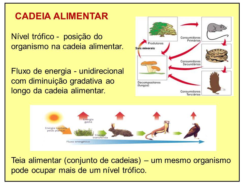 CADEIA ALIMENTAR Teia alimentar (conjunto de cadeias) – um mesmo organismo pode ocupar mais de um nível trófico. Nível trófico - posição do organismo
