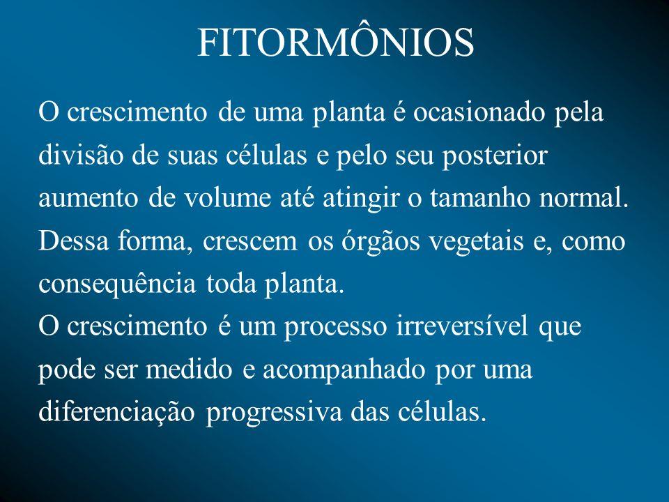 Etileno Provoca a maturação dos frutos; Floração( Inicia a floração em abacaxi).