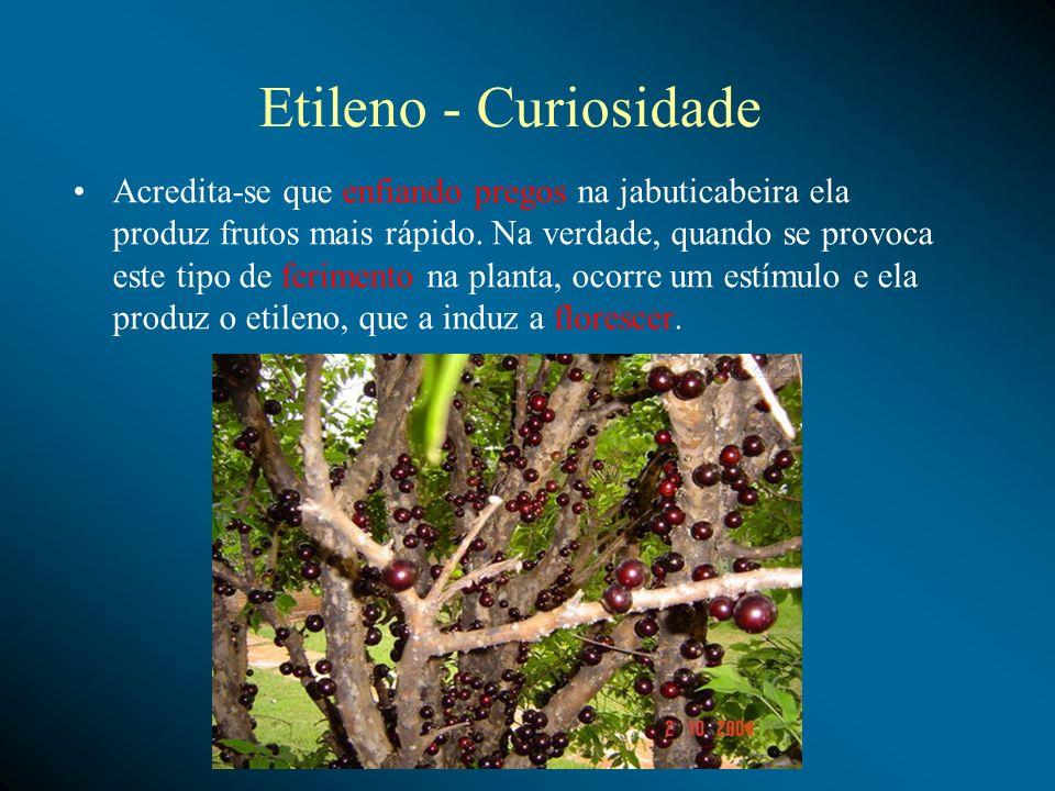 Etileno (C2H4) Um das funções do etileno é o amadurecimento de frutos, como maçãs, bananas, etc. Uma prática comum para acelerar o amadurecimento da b