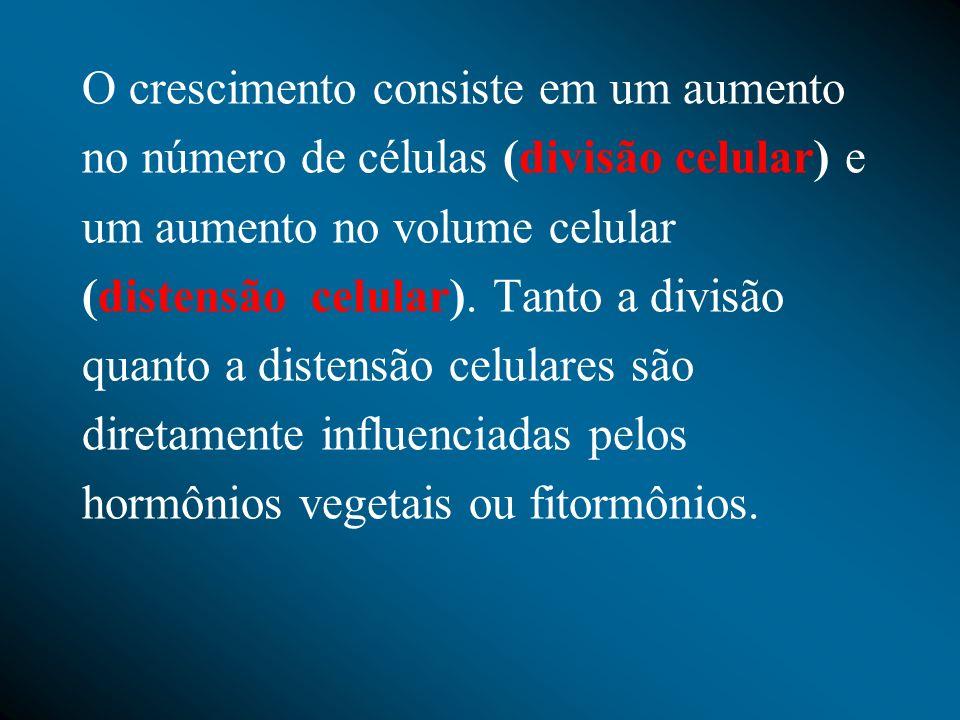 Etileno (C2H4) Um das funções do etileno é o amadurecimento de frutos, como maçãs, bananas, etc.