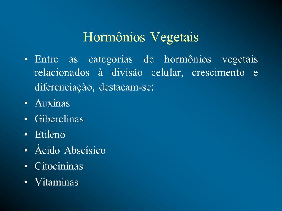 Hormônios Vegetais Entre as categorias de hormônios vegetais relacionados à divisão celular, crescimento e diferenciação, destacam-se : Auxinas Giberelinas Etileno Ácido Abscísico Citocininas Vitaminas