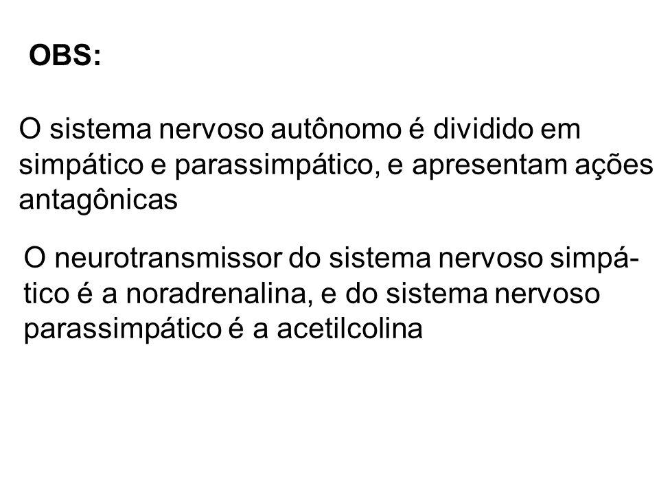 OBS: O sistema nervoso autônomo é dividido em simpático e parassimpático, e apresentam ações antagônicas O neurotransmissor do sistema nervoso simpá-