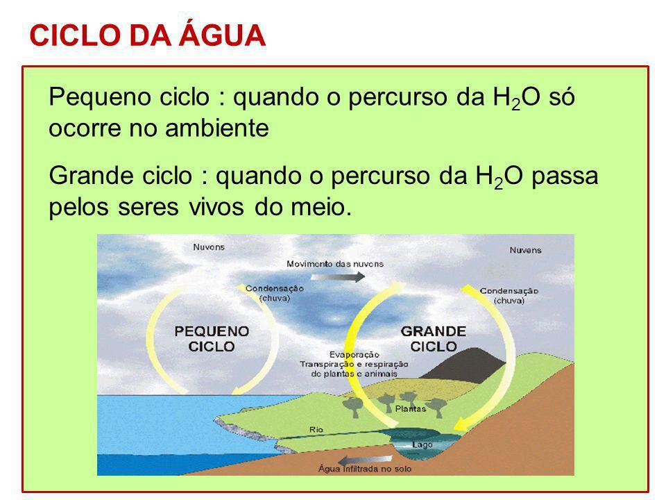 Pequeno ciclo : quando o percurso da H 2 O só ocorre no ambiente Grande ciclo : quando o percurso da H 2 O passa pelos seres vivos do meio. CICLO DA Á