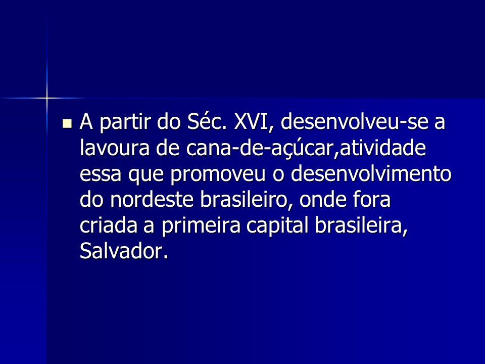 A partir do Séc. XVI, desenvolveu-se a lavoura de cana-de-açúcar,atividade essa que promoveu o desenvolvimento do nordeste brasileiro, onde fora criad