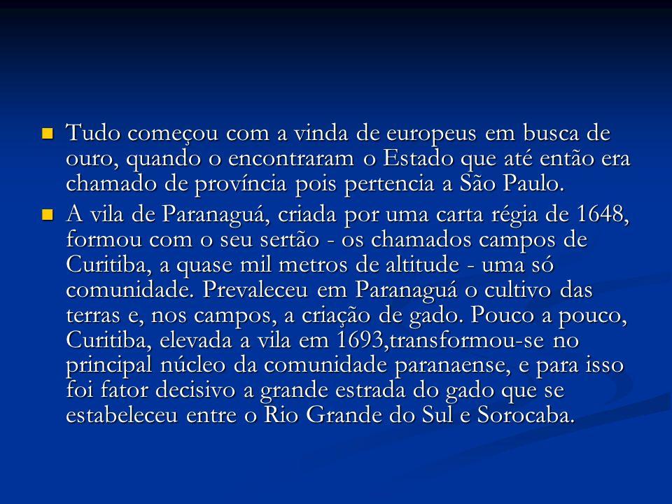 Tudo começou com a vinda de europeus em busca de ouro, quando o encontraram o Estado que até então era chamado de província pois pertencia a São Paulo