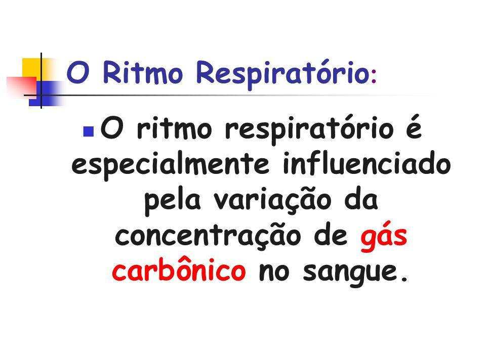O Ritmo Respiratório : O ritmo respiratório é especialmente influenciado pela variação da concentração de gás carbônico no sangue.