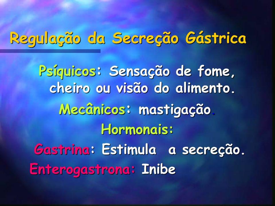 Regulação da Secreção Gástrica Psíquicos : Sensação de fome, cheiro ou visão do alimento. Mecânicos : mastigação. Hormonais: Gastrina: Estimula a secr