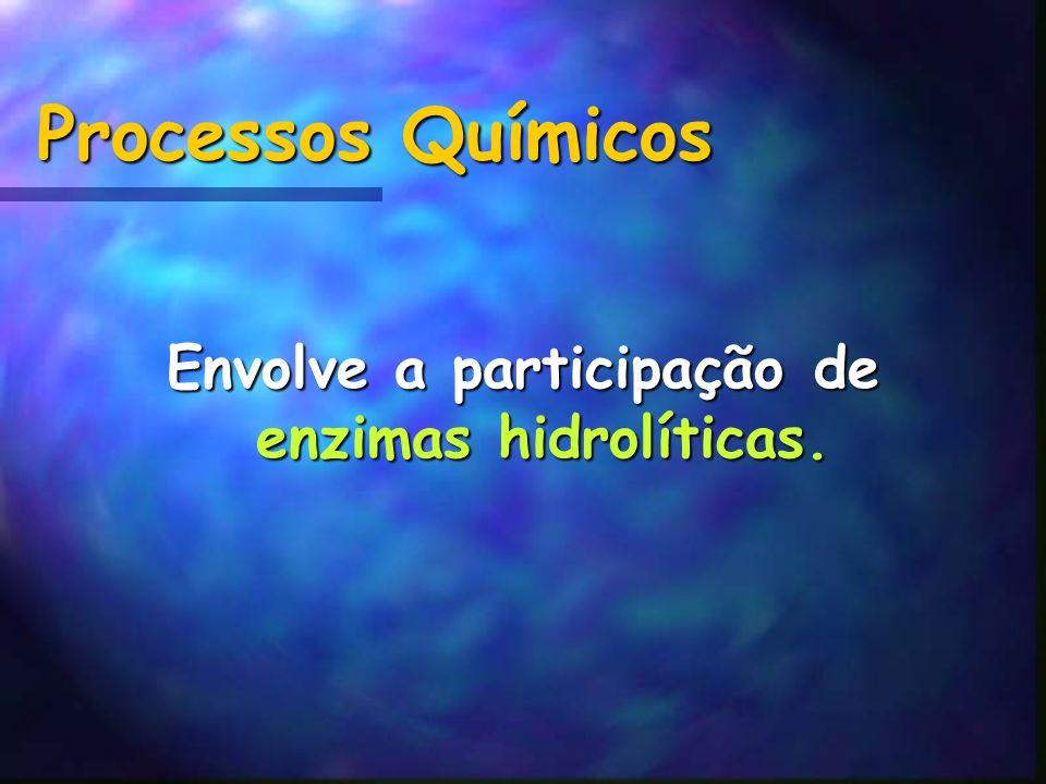 Processos Químicos Envolve a participação de enzimas hidrolíticas.