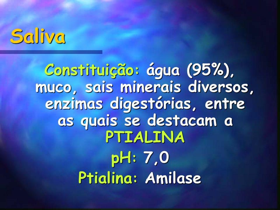 Saliva Constituição : água (95%), muco, sais minerais diversos, enzimas digestórias, entre as quais se destacam a PTIALINA pH : 7,0 Ptialina : Amilase