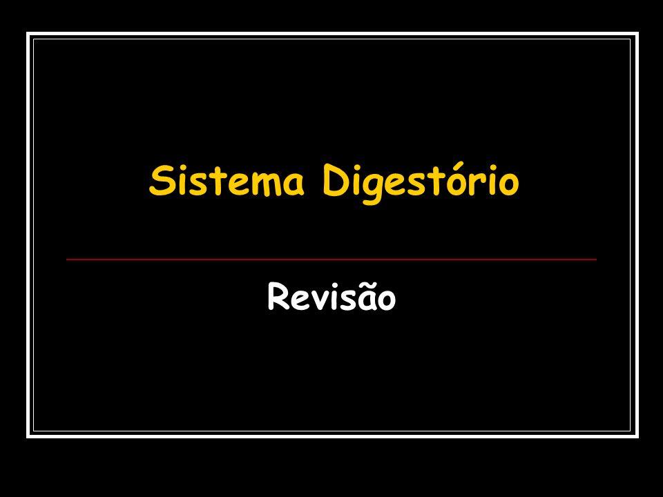Revisão Sistema Digestório