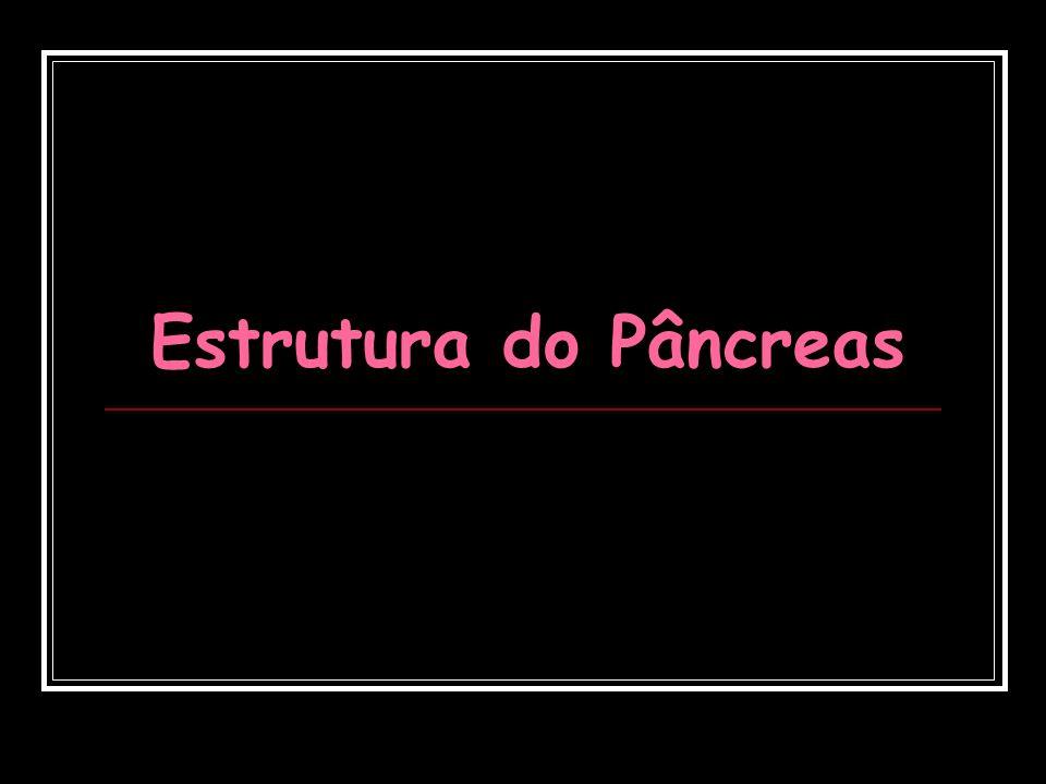 Estrutura do Pâncreas