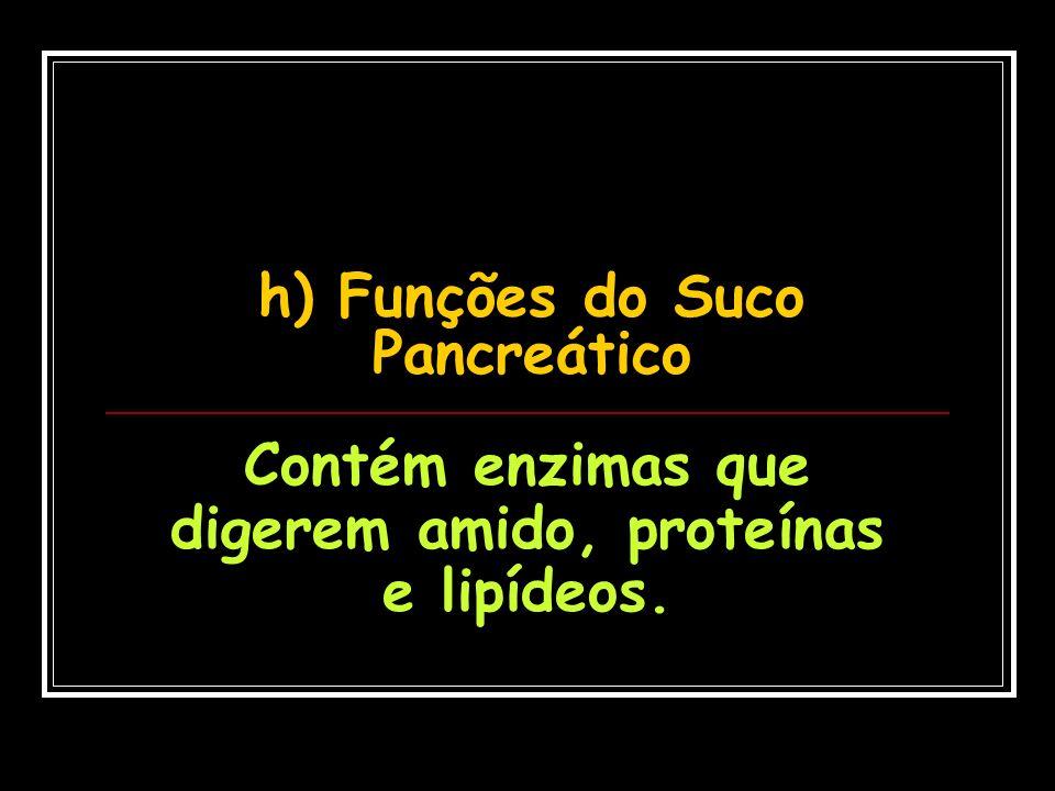 h) Funções do Suco Pancreático Contém enzimas que digerem amido, proteínas e lipídeos.