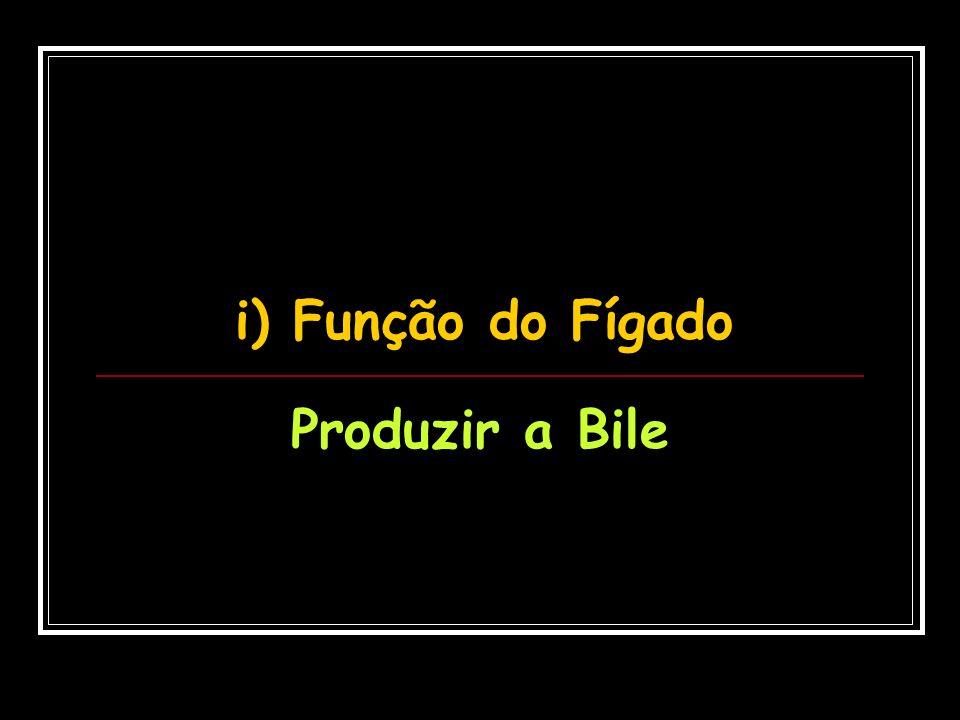 i) Função do Fígado Produzir a Bile