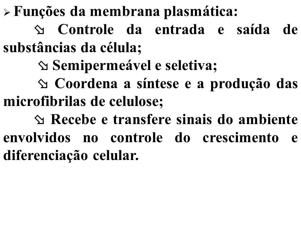Funções da membrana plasmática: Controle da entrada e saída de substâncias da célula; Semipermeável e seletiva; Coordena a síntese e a produção das mi