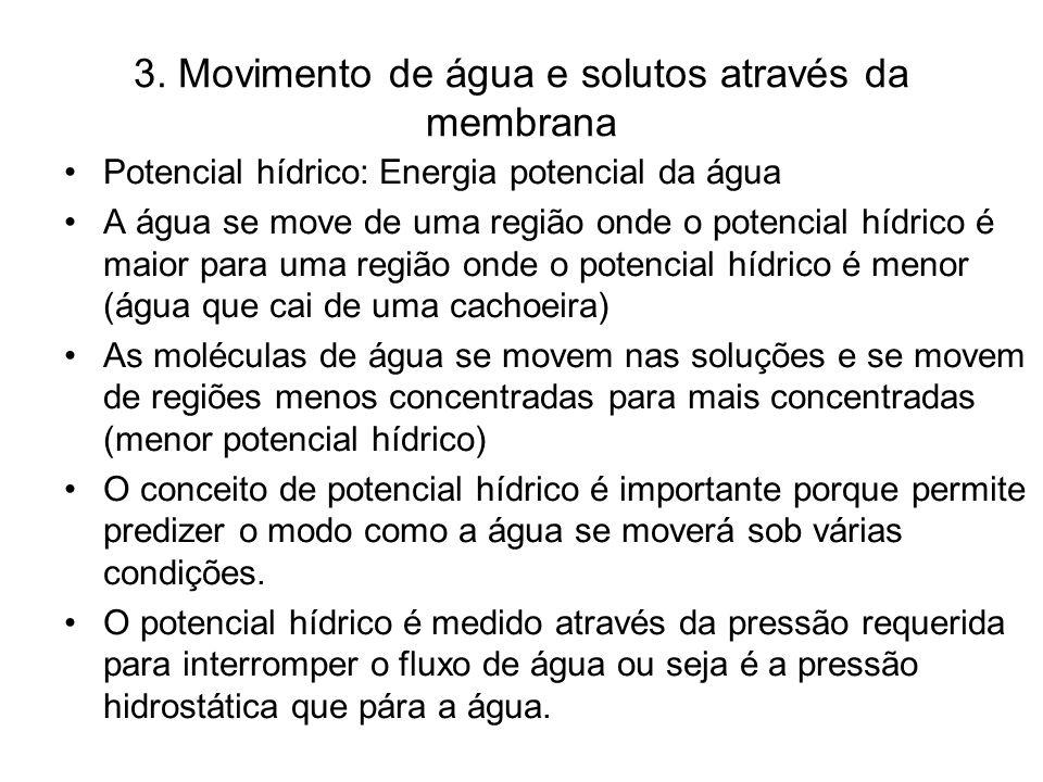 3. Movimento de água e solutos através da membrana Potencial hídrico: Energia potencial da água A água se move de uma região onde o potencial hídrico