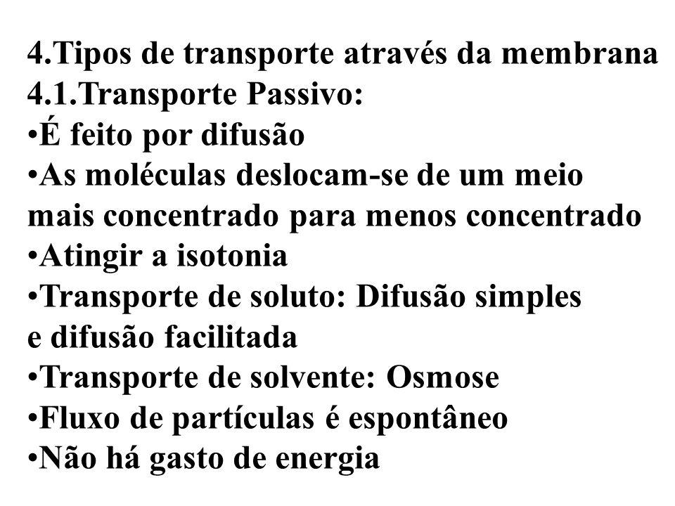4.Tipos de transporte através da membrana 4.1.Transporte Passivo: É feito por difusão As moléculas deslocam-se de um meio mais concentrado para menos concentrado Atingir a isotonia Transporte de soluto: Difusão simples e difusão facilitada Transporte de solvente: Osmose Fluxo de partículas é espontâneo Não há gasto de energia