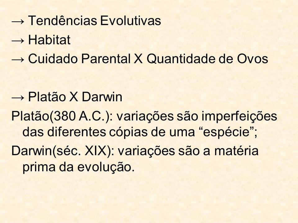 Tendências Evolutivas Habitat Cuidado Parental X Quantidade de Ovos Platão X Darwin Platão(380 A.C.): variações são imperfeições das diferentes cópias