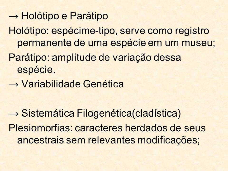 Holótipo e Parátipo Holótipo: espécime-tipo, serve como registro permanente de uma espécie em um museu; Parátipo: amplitude de variação dessa espécie.
