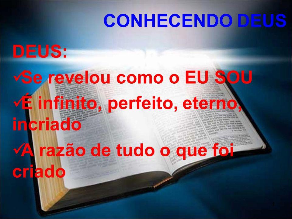 4 DEUS: Se revelou como o EU SOU É infinito, perfeito, eterno, incriado A razão de tudo o que foi criado CONHECENDO DEUS