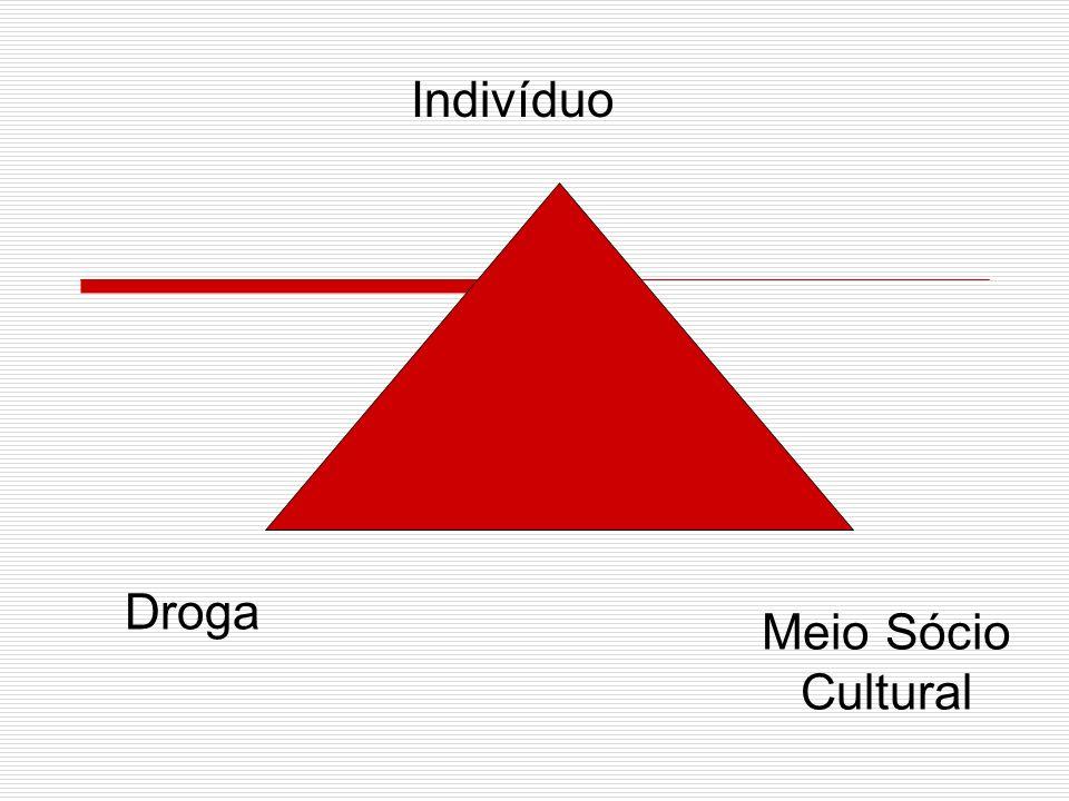 Indivíduo Droga Meio Sócio Cultural